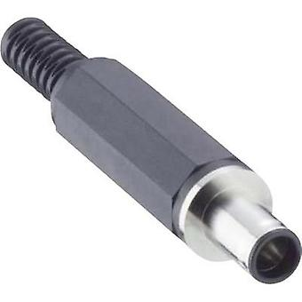 Low power connector Plug, straight 5.6 mm 0.9 mm