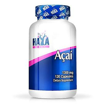 Haya Labs Acai 1000mg. 120 Capsules (Sport , Others)