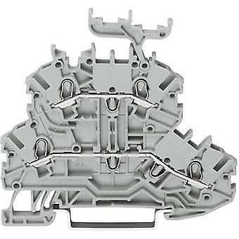 WAGO 2000-2201 Dualport continuity 3.50 mm Pull spring Configuration: L, L Grey 1 pc(s)