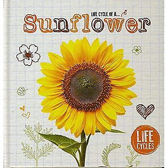 Life Cycle of a Sunflower (Life Cycles)