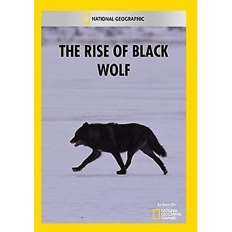 Aufstieg der schwarzen Wolf [DVD] USA import