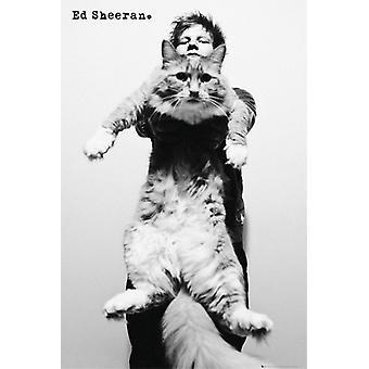 Ed Sheeran Cat Poster Poster Print