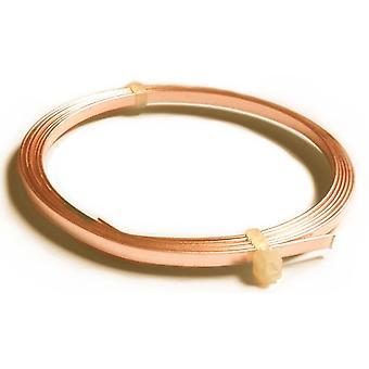 1 x Unplated Anti Tarnish Copper 0.75 x 3mm x 1m Flat Tape Craft Wire Coil X1265