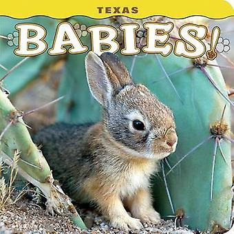 Texas Babies! by Steph Lehmann - 9781560376811 Book