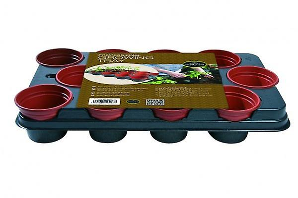 Growing Tray (12 x 11cm Pots) Professional Planting Gardening