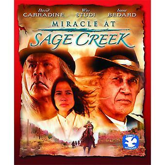 Mirakel på Sage Creek [Blu-ray] USA import