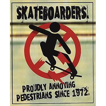 Skateboarders Poster Poster Print