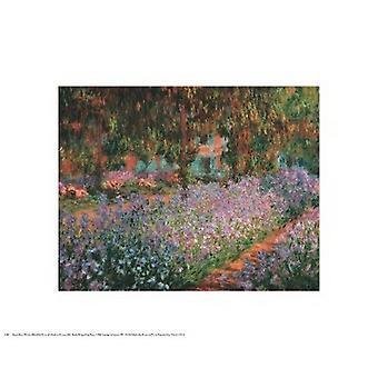Jardim de artistas em Giverny 1900 Poster Print por Claude Monet (20 x 16)