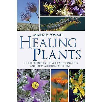 Guérison des plantes - plantes médicinales traditionnelles à anthroposophique