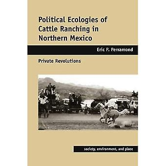 Politiska ekologier av boskapsuppfödning i norra Mexiko privata varv