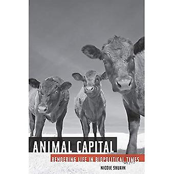 Animal Capital: Rendering Life in Biopolitical Times (Posthumanities)