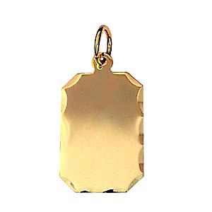 9ct Gold 18x12mm plain rectangular diamond cut edge disc