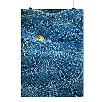 Matte or Glossy Poster with Blue Water Leaf Nature Ocean Nature | Wellcoda | *q1288