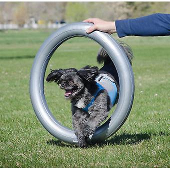 FitPAWS Donut Holder (Dogs , Training Aids , Proprioception)