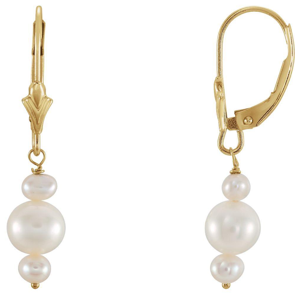 14 k jaune or blanc perle Triple d'eau douce cultivées boucle d'oreille 3,0-3,5 5,5-6mm