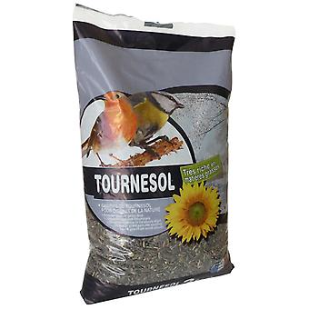 Agrobiothers Sunflower Seeds Wild Birds Odc (Birds , Bird Food)