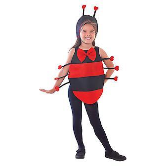 Ladybird Dress Up Kit