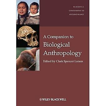 Ein Begleiter zur biologischen Anthropologie