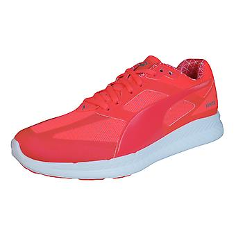 PUMA entzünden Pwrwarm Womens Running Trainer / Schuhe - Orange