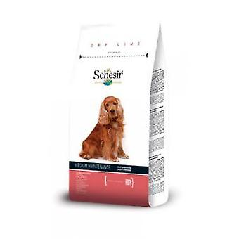 Schesir Schesir  Medium Maintenance with fish (Dogs , Dog Food , Dry Food)