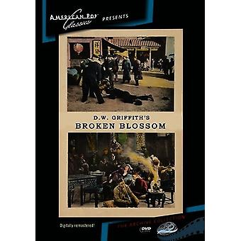 Broken Blossoms [DVD] USA import