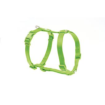 Freedog Arnés Nylon Basic Verde lima (Dogs , Collars, Leads and Harnesses , Harnesses)