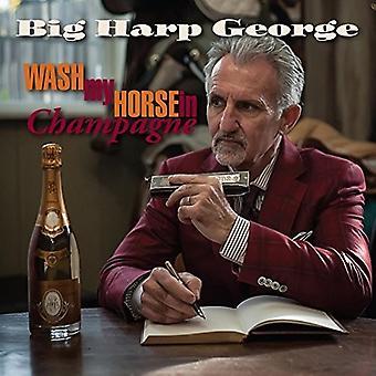 Duże harfa George - Wash My Horse w importu szampana USA [CD]