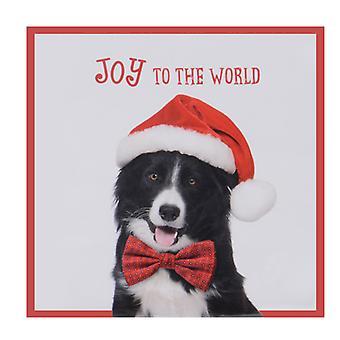 """TRIXES """"Joy to the World"""" 20PC Pack hund servetter med Santa hatt"""