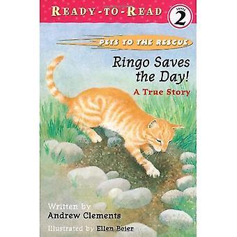 Ringo rettet den Tag!: eine wahre Geschichte (Haustiere zur Rettung)