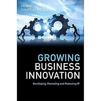 Growing Business Innovation:� Book 2