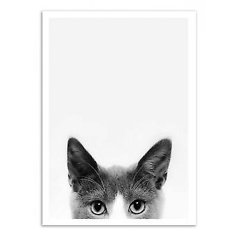 Art-poster-Peekaboo Cat-Sisi och SEB 50 x 70 cm