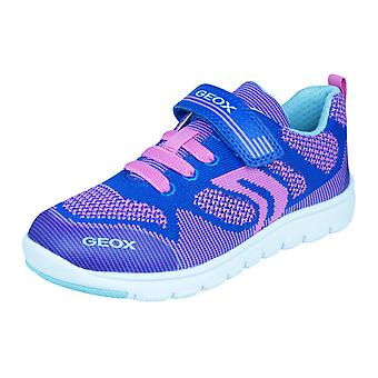Geox J Xunday G.B. Girls Trainers / Shoes - Blue and Fuchsia