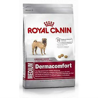رويال كانين أغذية الكلاب ديرماكومفورت متوسطة 10 كجم