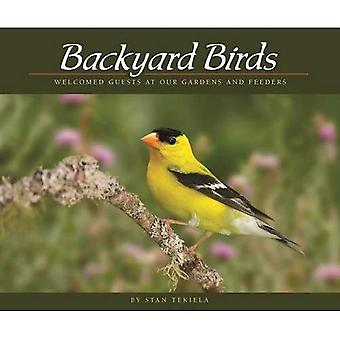 Backyard Birds: Welcomed Guests at Our Gardens and Feeders (Wildlife Appreciation)
