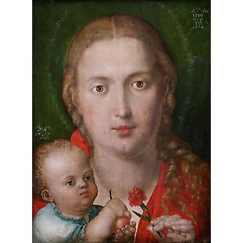 The Madonna with a Carna-tion,Albrecht Durer,39x29cm