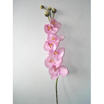 Artificial Silk Phalaenopsis Orchid Single Stem
