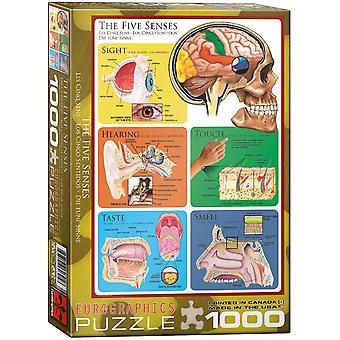 The Five Senses 1000 piece jigsaw puzzle 680mm x 490mm  (pz)
