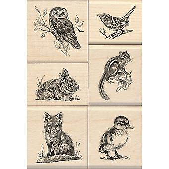 Inkadinkado Mounted Stamp Set 3.25