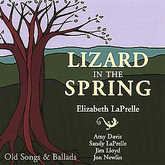 Elizabeth Laprelle - Lizard in the Spring [CD] USA import