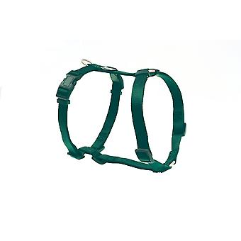 Freedog Green Basic Nylon Harness (Dogs , Collars, Leads and Harnesses , Harnesses)