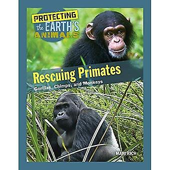 Rescuing Primates: Gorillas,� Chimps, and Monkeys (Protecting the Earth's Animals)