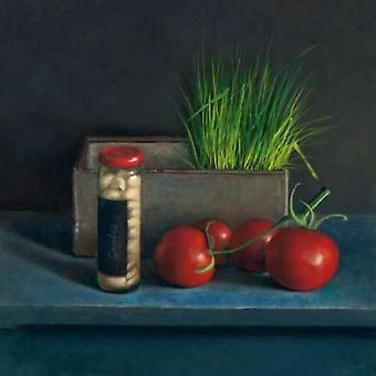 По-прежнему жить с томатным плакат печати Йос ван Riswick
