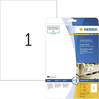 Herma 10911 Labels (A4) 210 x 297 mm Paper White 25 pc(s) Permanent Adhesive labels (extra strong), All-purpose labels I
