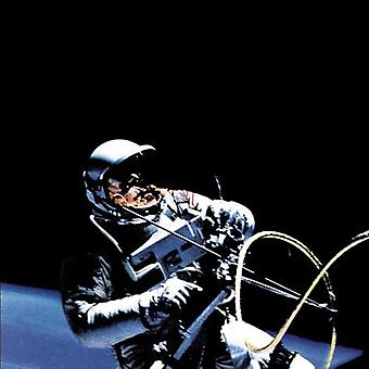 Afghan Whigs - 1965 [CD] USA import