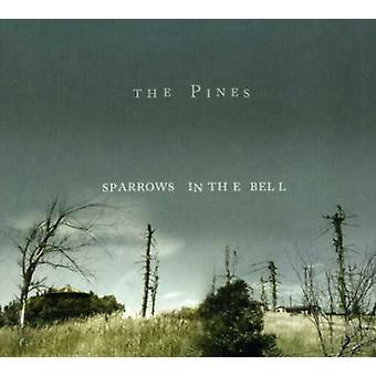 Pines - spurve i Bell [CD] USA importerer
