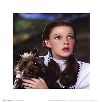 Wizard of Oz - Dorothy en Toto Poster Poster afdrukken