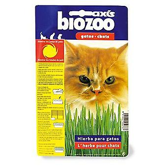 Axis-Biozoo Herbe à Chat Axis (Chats , Malt et Herbes)