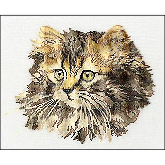 Long-Haired Brown Cat On Aida Counted Cross Stitch Kit-11.75