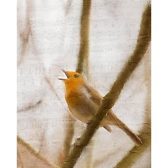 Bird on a Branch 2 Poster Print by Allen Kimberly