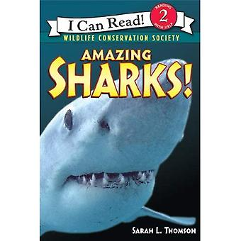 Amazing Sharks! (I Can Read Books: Level 2 Nonfiction)